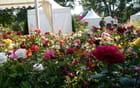 Salon des plantes - La ronde des jardins - Jacqueline DUBOIS