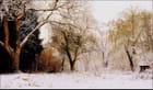 Songe d'un jour d'hiver... - Anne Jeanty