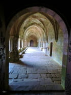 Le Cloître de l'Abbaye de Fontfroide - marie-antoinett gautier