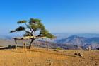 Point de vue sur le Jebel Shams - Alice AUBERT