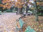 Couleurs et ambiance d'automne. - jean-marc puech