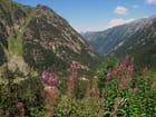 Vue panoramique sur le massif du pont d'Espagne - Pyrénées. par jean-marc puech sur L'Internaute