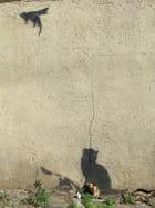 peinture de chat chasse la souris volante - jean christophe aubry