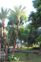 Maroc Marrakech - jean claude Bauduin