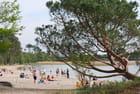 La plage au bord du lac - Genevieve LAPOUX