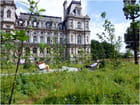 """2013. """"Jardin éphémère"""", Parvis de l'Hôtel-de-Ville de Paris"""