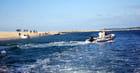 en bateau devant le banc d'Arguin - Genevieve LAPOUX