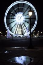 Lumières de Noël, Place de la Concorde  - Caroline PAUX