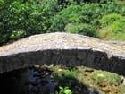 Vieux pont de pierre (1) - Jean-pierre MARRO