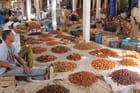Maroc Rissani - jean claude Bauduin
