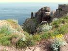 Promenade au cap Fréhel....... belles et dangereuses falaises ! - christian fischer
