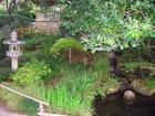 Jardin Japonais (5) - Jean-pierre MARRO