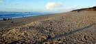les grandes plages des Landes - Genevieve LAPOUX