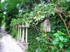 Jardin Japonais (1) - Jean-pierre MARRO