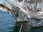 Tall ships' race 5 - Norbert SIROT