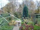 Automne au jardin - Josy FAIRON