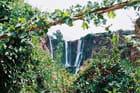 Cascades d'Ouzoude - Driss AGHZAF