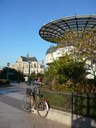 Contraste sur ciel d'azur - Sylvie SAERENS