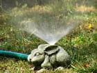 Lapin nain de jardin - Mathieu HAZARD