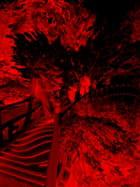 Fusion - Yannick BLANCHARD