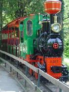 Petit train vert - William NUNINGER