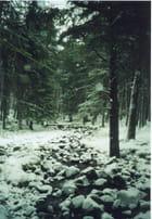 Ecosse en hiver -