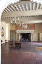Chateau de chateauneuf en auxois - maryse rozerot