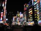 Tokyo by night par Severine FERAL-KELLER sur L'Internaute