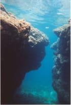 Belle vue sous-marine - Hélène KUNTZ
