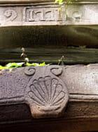 Coquille saint-jacques par Marc CHARTIER sur L'Internaute