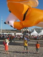 Festival de cerf-volants - Laurent BRID
