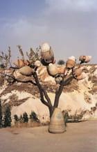 L'arbre à pots - Céline LOUIS