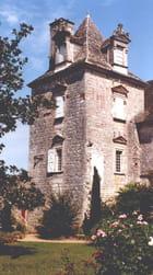 Chateau de CENEVIERES par Raymonde SCHWEITZER sur L'Internaute