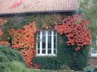 Tableau d'automne - MIchèle CASSE