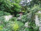 Jardin secret par Marie VANDENBERGHE sur L'Internaute