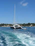 Catamaran - Jean-paul PATARD