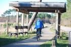 à vélo autour du lac