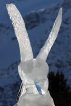 Aigle de glace