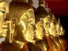 Alignement de bouddha