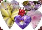 Amours de fleurs