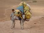 Ane marocain