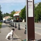 Ange aussi attend le bus tous les jours...