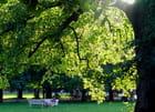 Apres-midi dans le parc