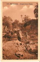 Aragua dans l\'oasis