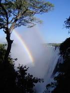 Arc en ciel sur les chutes Victoria