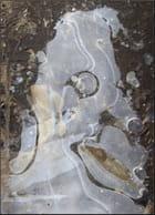 Art abstrait de la nature avec le gel