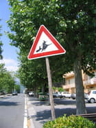 http://image-photos.linternaute.com/image_photo/140/attention-sorciere-volante-3114587665-864536.jpg