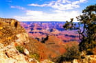 Au bord du Grand Canyon
