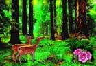 Au coeur de la forêt...
