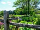 Au jardin van den hende